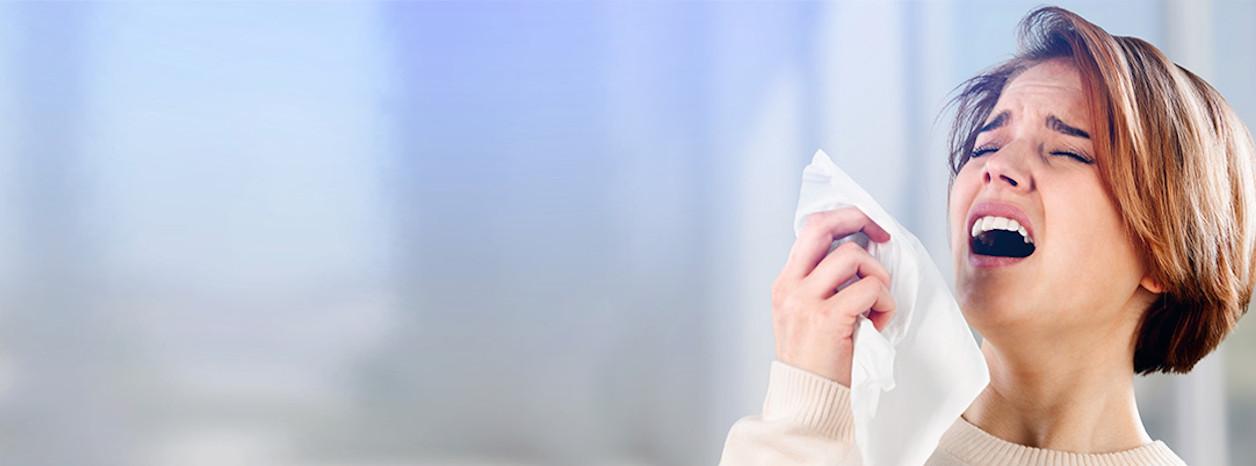 alergiczny nieżyt nosa kichanie